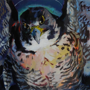 Avenging Hawk