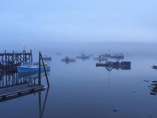 swh fog